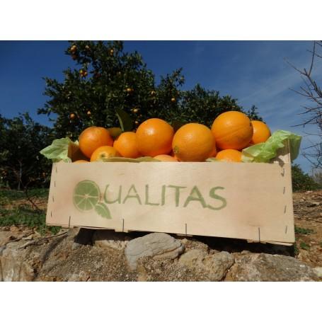 Naranjas de Mesa 10 Kg