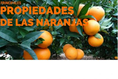 Principales propiedades de las naranjas